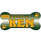 DOG HAIR STUDIO KEN